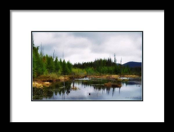 Adirondack Mountains Framed Print featuring the painting Backcountry Lake - Adirondacks by Linda Seifried