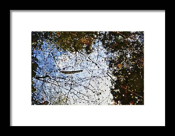 Background Framed Print featuring the photograph Background Nature Green by HazelPhoto