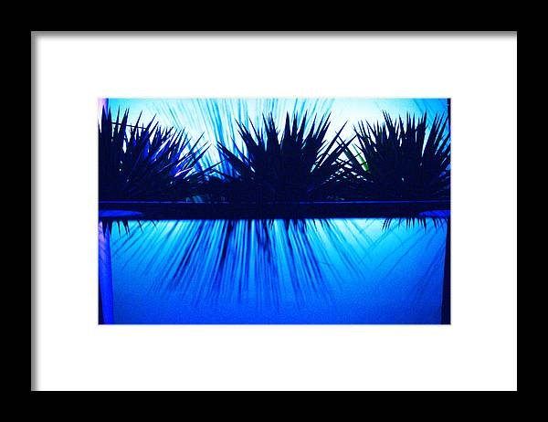 Blue Framed Print featuring the photograph Backlit by Blue by Richard Henne