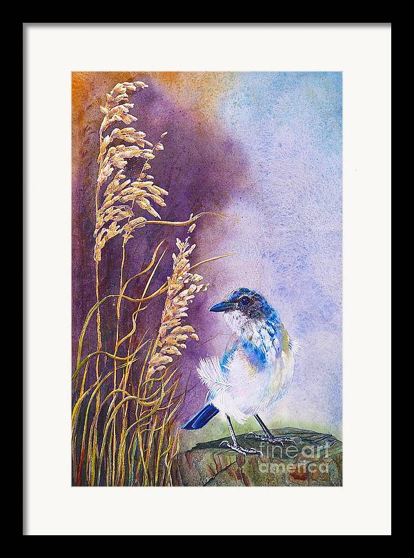 Scrub Jay Framed Print featuring the painting Bad Feather Day by Jany Schindler