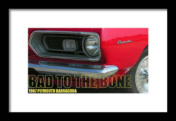 Barracuda Framed Print featuring the photograph Bad To The Bone by Richard Rizzo