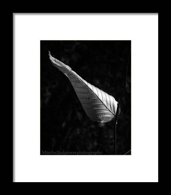 Black & White Framed Print featuring the photograph Balance by Megen McAuliffe
