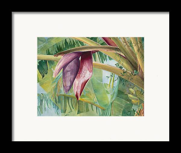 Bananas Framed Print featuring the painting Banana Flower by AnnaJo Vahle