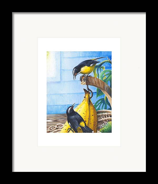 Chris Cox Framed Print featuring the painting Bananaquits And Bananas by Christopher Cox