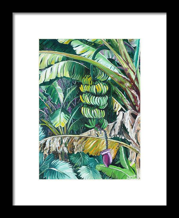 Caribbean Painting Bananas Trees P Painting Fruit Painting Tropical Painting Framed Print featuring the painting Bananas by Karin Dawn Kelshall- Best