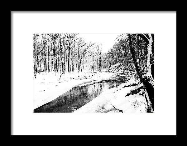 Nature Framed Print featuring the photograph Bare Winter Branches by Robin Lynne Schwind