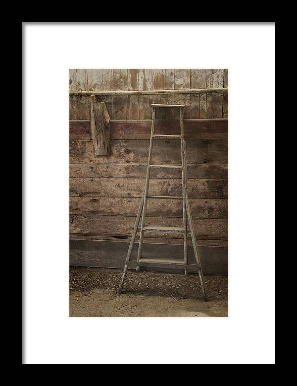 Scott Farm Vermont Framed Print featuring the photograph Barn Ladder by Tom Singleton