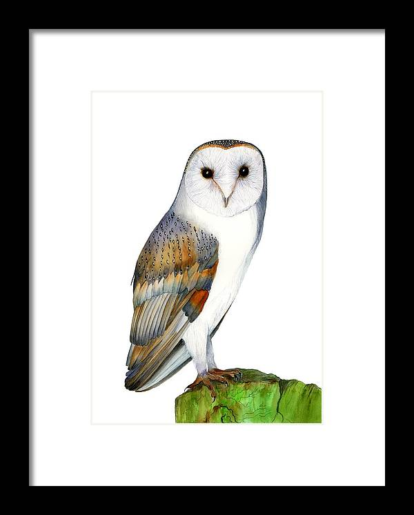 Barn Owl Framed Print featuring the painting Barn Owl by Alison Langridge