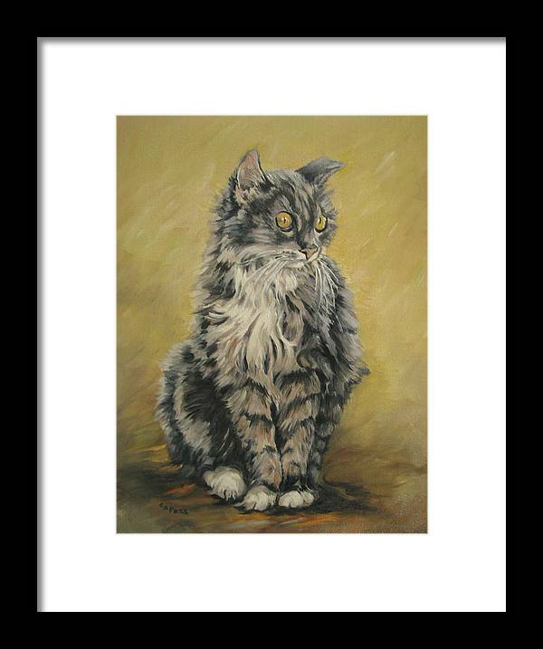 Cat Framed Print featuring the painting Barnhardt's Cat by Cheryl Pass