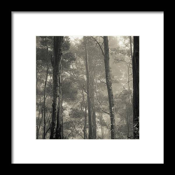 Landscape Framed Print featuring the photograph Barrington Mist by Mel Brackstone