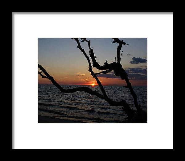Delare Bay Framed Print featuring the painting Bay Dreams by Debbie May