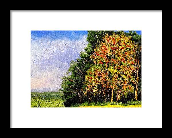 Plein Air Framed Print featuring the painting Bc11 by Stan Hamilton