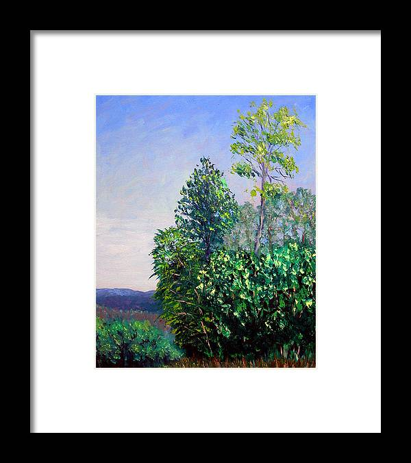 Original Oil On Canvas Framed Print featuring the painting Bcsp 5-29 by Stan Hamilton
