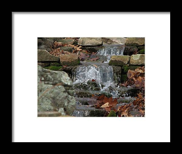 Nature Framed Print featuring the photograph Be Water by Jonathan Ellis Keys