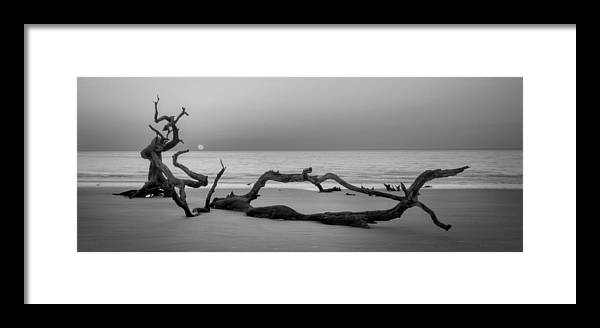 Driftwood Framed Print featuring the photograph Beach Art Cropped In Black An White by Greg Mimbs