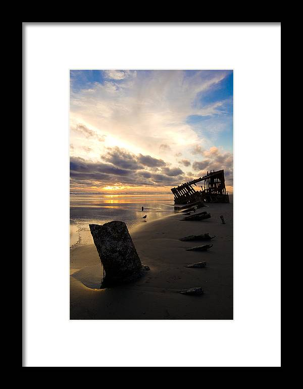 Landscape Framed Print featuring the photograph Beach Bones by Jennifer Owen