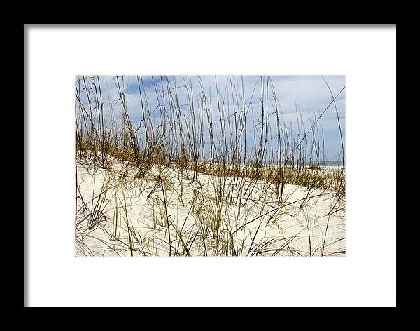 Beach Framed Print featuring the photograph Beach Dunes by David Lee Thompson