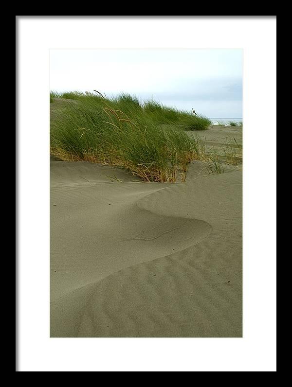 Beach Framed Print featuring the photograph Beach Grass by Jessica Wakefield