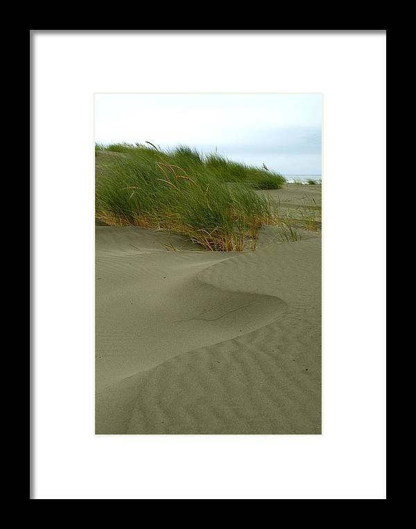 Beach Framed Print featuring the photograph Beach Grass by Jessica Wakefield
