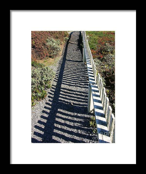 Half Moon Bay Framed Print featuring the photograph Beach Path by Carol Groenen