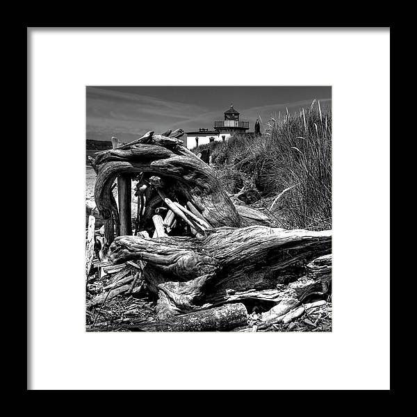 Tree Stump Framed Print featuring the photograph Beached Tree Stump by David Patterson