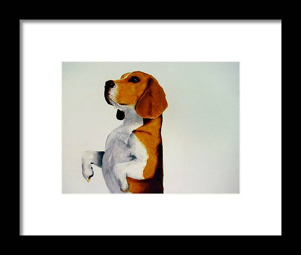 Beagle Framed Print featuring the painting Beagle by Dick Larsen