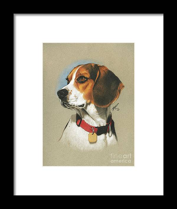 Pet Framed Print featuring the painting Beagle by Marshall Robinson