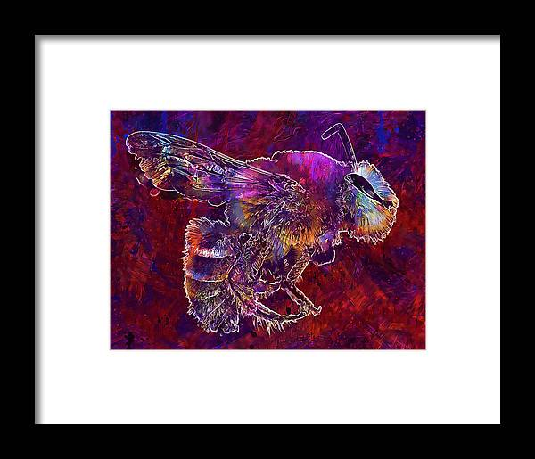 Bearded Framed Print featuring the digital art Bearded Bee Macro Insect Nature by PixBreak Art