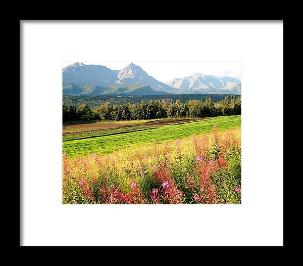 Landscape Framed Print featuring the photograph Beautiful Butte Alaska by Sheila J Hall