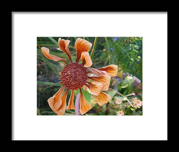 Flower Framed Print featuring the digital art Beautiful Disaster by Holly Ethan