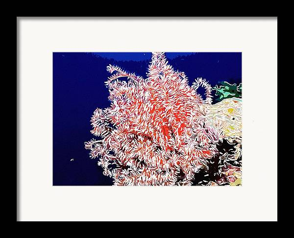 Starfish Framed Print featuring the painting Beautiful Fan Coral by Lanjee Chee