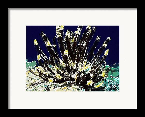 Starfish Framed Print featuring the painting Beautiful Marine Plants 10 by Lanjee Chee