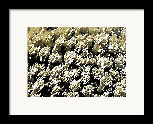Starfish Framed Print featuring the painting Beautiful Marine Plants 4 by Lanjee Chee
