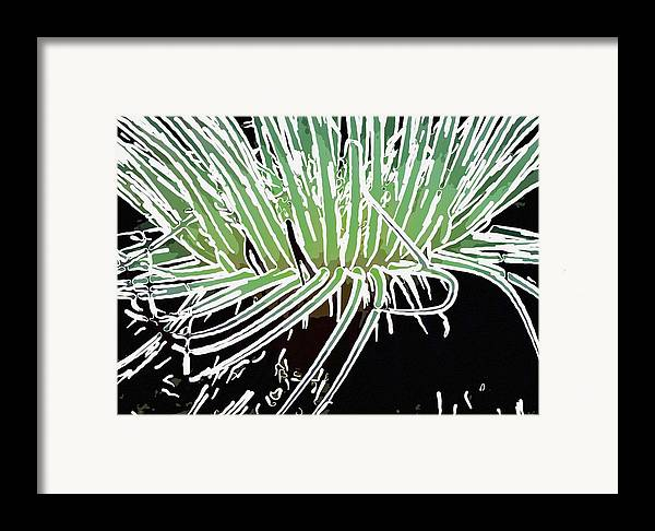 Starfish Framed Print featuring the painting Beautiful Sea Anemone 3 by Lanjee Chee