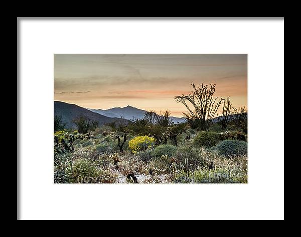 Wildflowers Framed Print featuring the photograph Beautiful Sunset by Jerry Sellers
