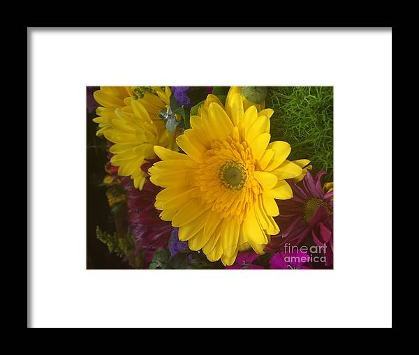 Daisy Framed Print featuring the photograph Beauty Of Spring by Nona Kumah