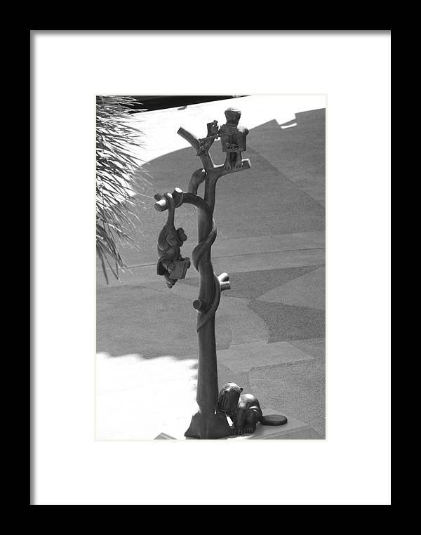 Black And White Framed Print featuring the photograph Beavers Bats And Squirrels by Rob Hans