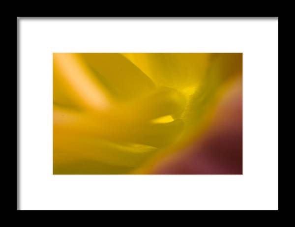 Abstract Framed Print featuring the photograph Before by Ches Black