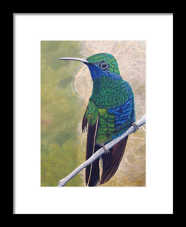Humming Bird Framed Print featuring the painting Beija Flor And Nest by Jeffrey Oldham