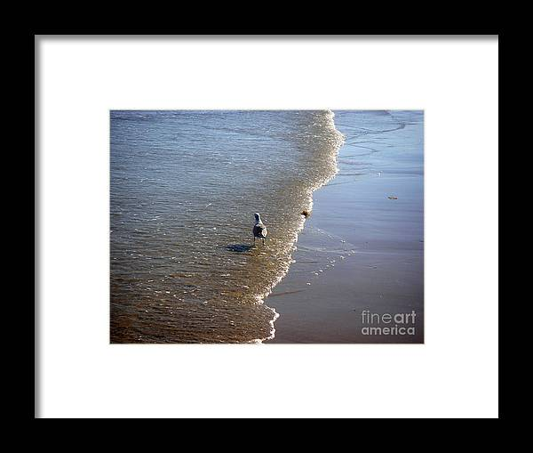 Nature Framed Print featuring the photograph Being One With The Gulf - Ahead by Lucyna A M Green