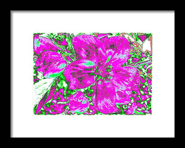 Bella Flora Framed Print featuring the digital art Bella Flora 2 by Will Borden