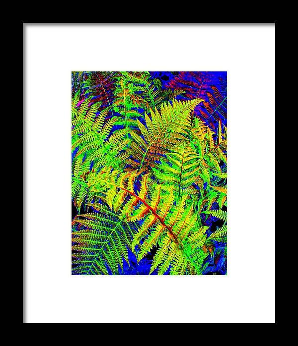 Bella Flora Framed Print featuring the digital art Bella Flora by Will Borden