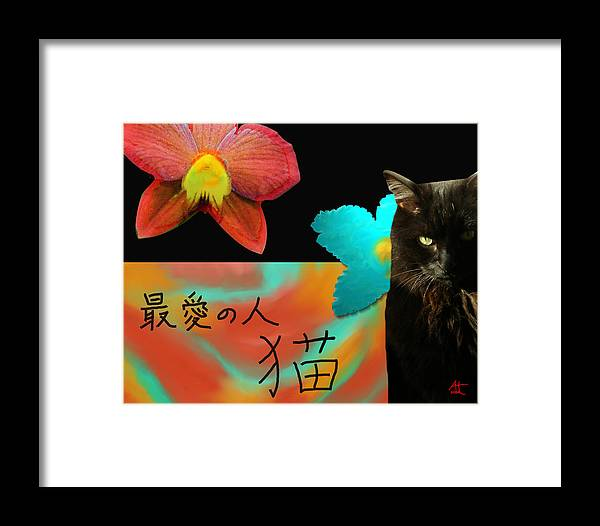 Cat Framed Print featuring the photograph Beloved Cat by Ann Tracy