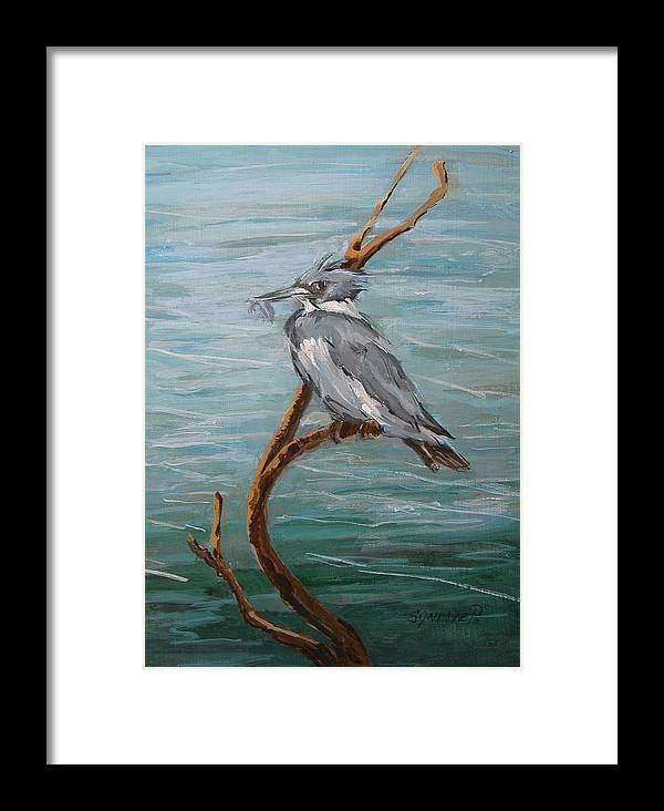 Birds Framed Print featuring the painting Belted Kingfisher by Synnove Pettersen