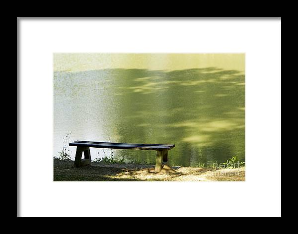 Bench Framed Print featuring the photograph Bench On A Lake by Dan Radi
