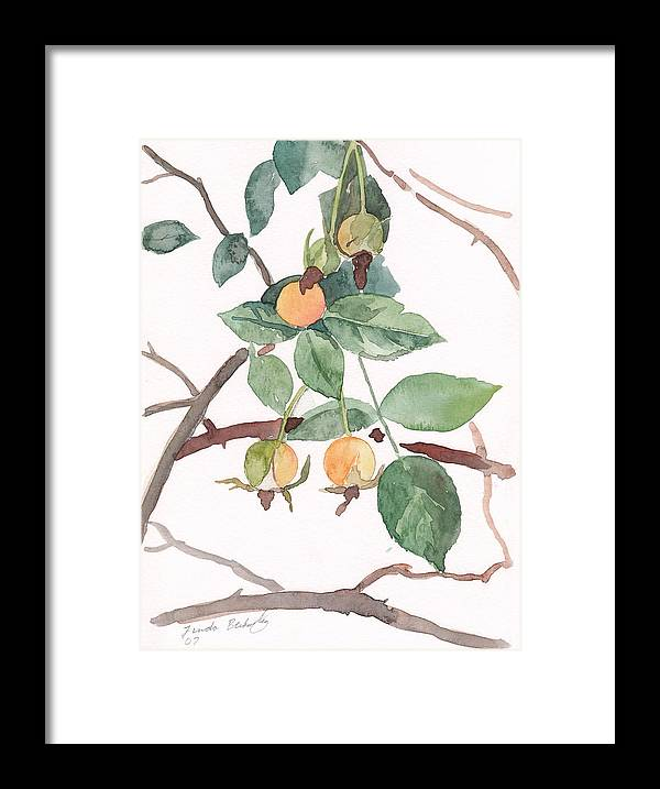 Paintings Framed Print featuring the painting Berries In Pink Light by Linda Berkowitz