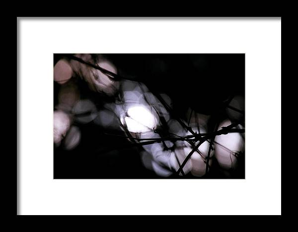 Trees Framed Print featuring the photograph Beyond Recognition 1 by CD Good