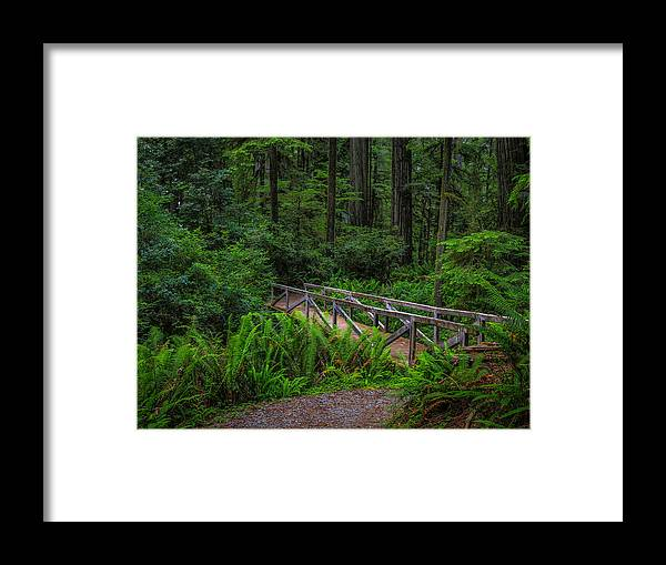 Bridge Framed Print featuring the photograph Beyond The Bridge by Michele James