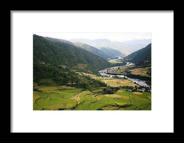 Scenery River Winding \rice Fields\ Lush Green View Bhutan \namgyal Choling\ Framed Print featuring the photograph Bhutan Rice Fields by Linda Russell