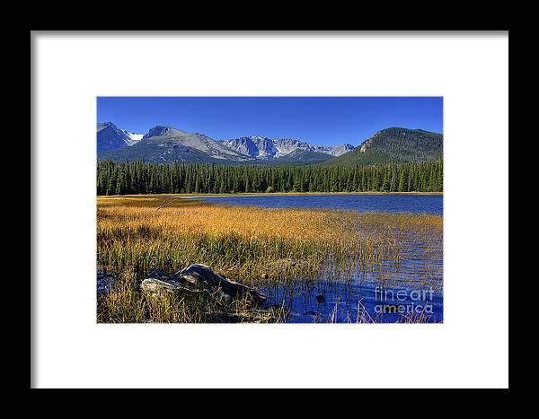 Bierstadt Framed Print featuring the photograph Bierstadt Lake Shoreline 2 by Pete Hellmann